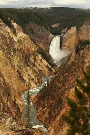 Yellowstone - River