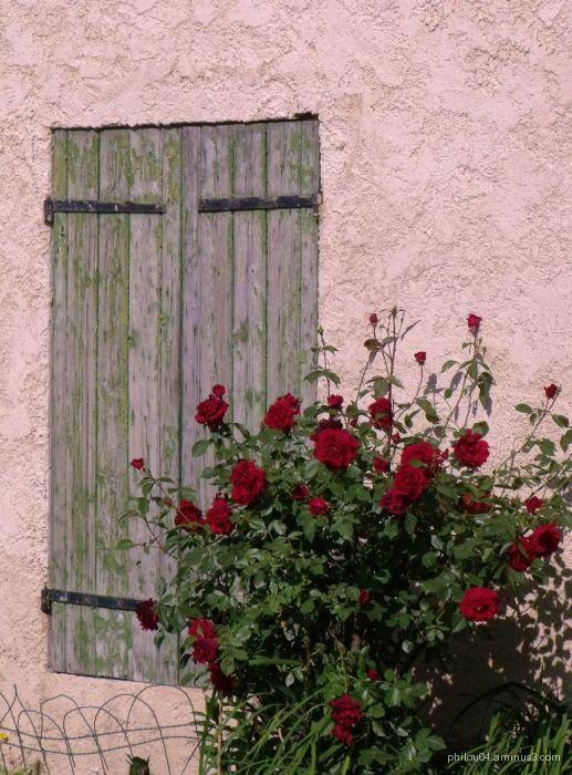 Roses et rouges