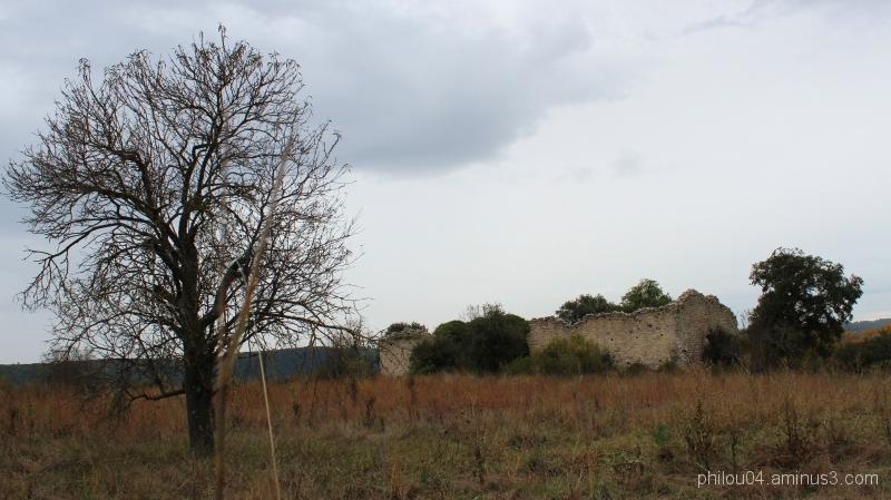 Ruines (1)