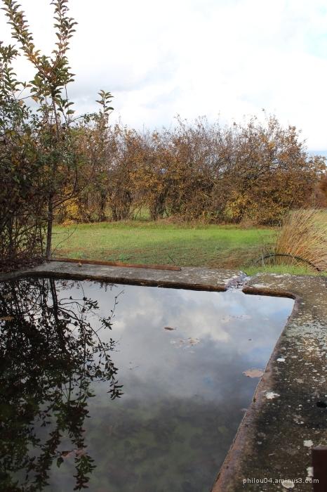 Couleurs d'automne - Bassin