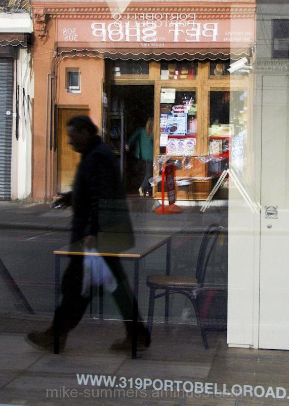 reflection street pet shop portobello road
