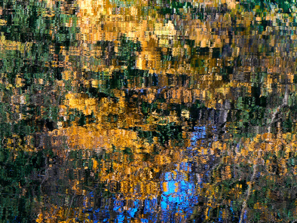 water reflections autumn
