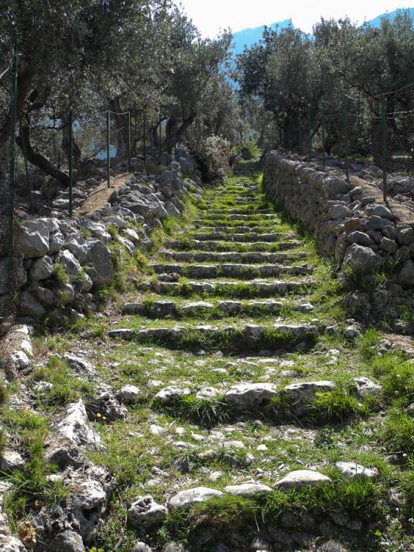 Mallorca steps