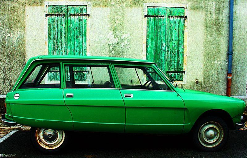 La vie en vert...
