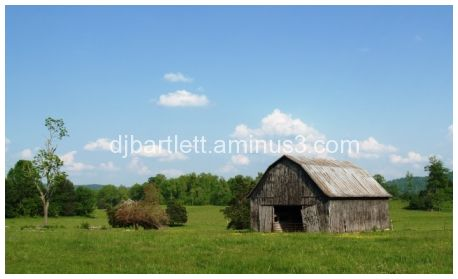 barn in field with trees and brush pile,