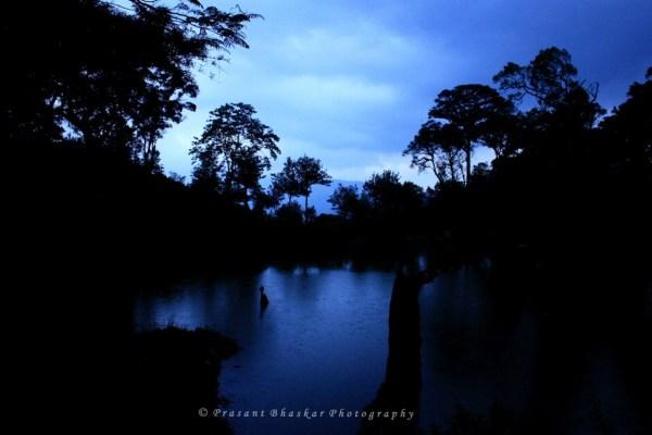 A drizzling evening.., @ Munnar..