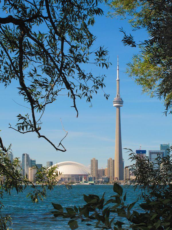 Toronto skyline daylight with foliage.