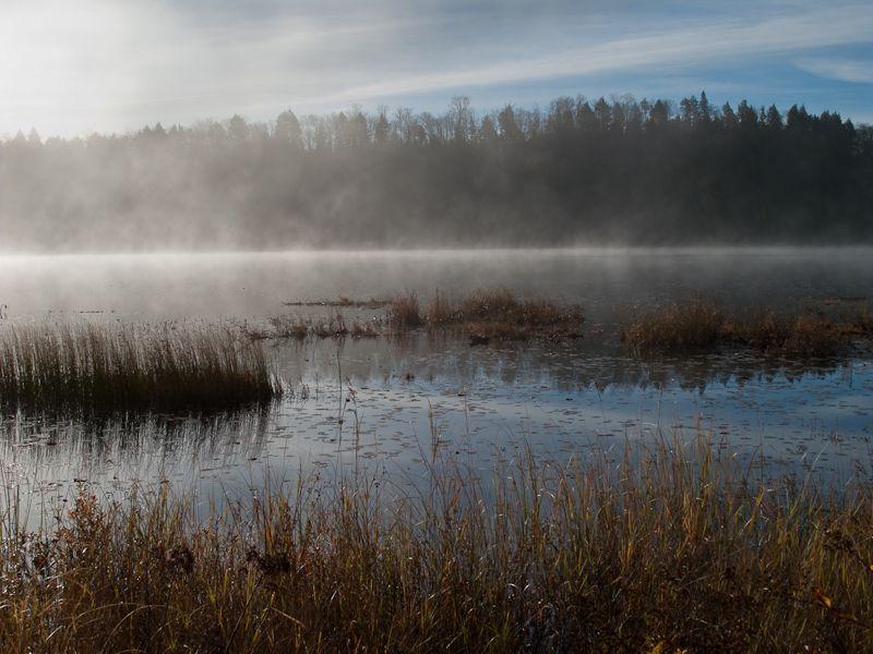 Algonquin Ontario Autumn lake morning mist