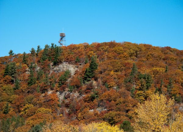 Ontario Autumn trees colours wood tower