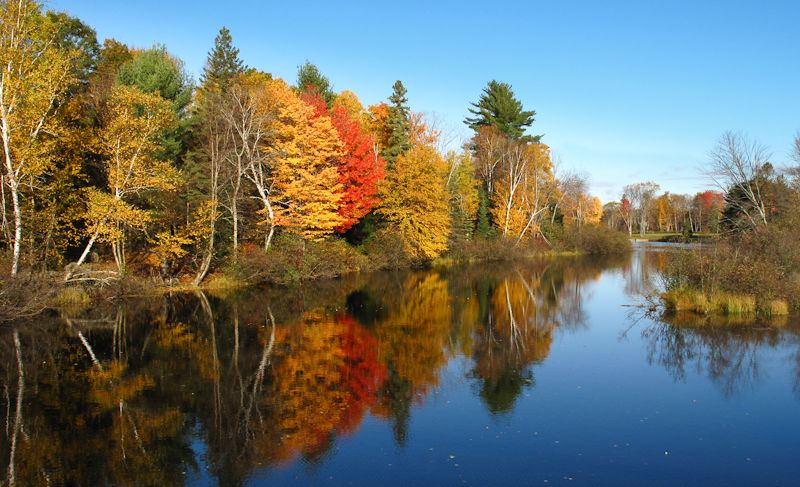 Bancroft, Autumn, colours, leaves, reflection