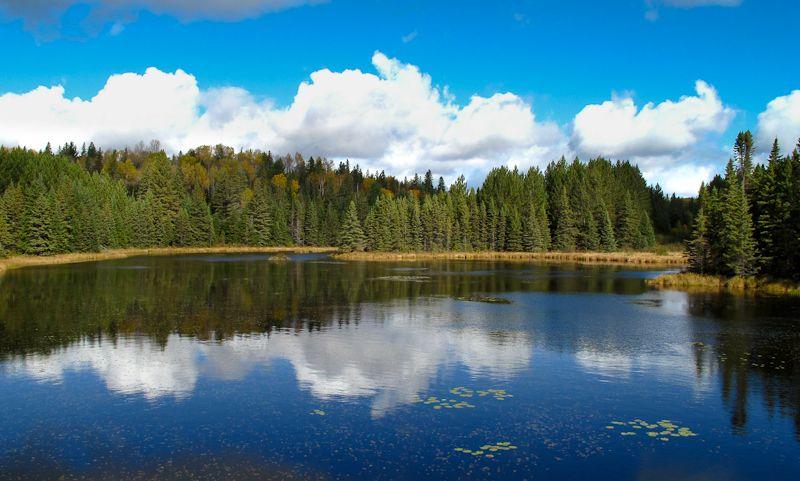 Algonquin Autumn lake reflection sky