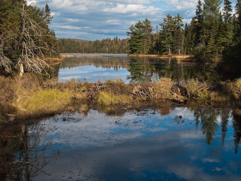 """Algonquin reflection sky """"beaver dam"""""""