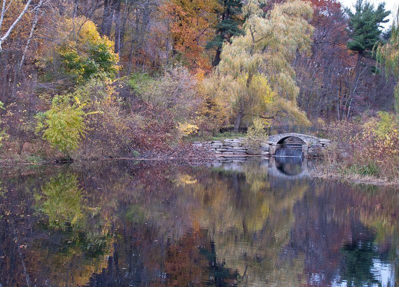 """High Park"" Toronto Autumn Colours reflection"
