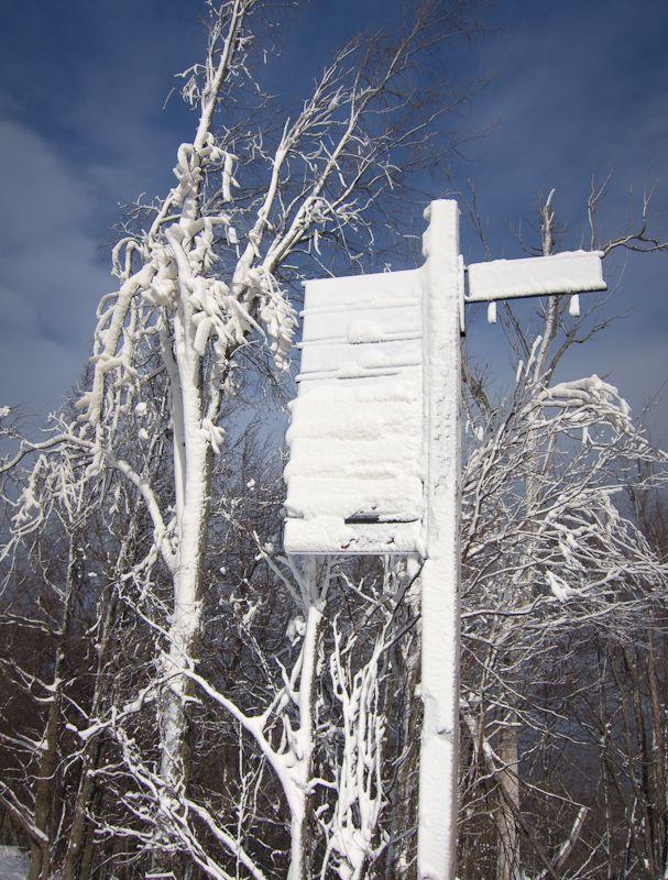 """Blue Mountain"" Ontario snow sky ski sign Winter"