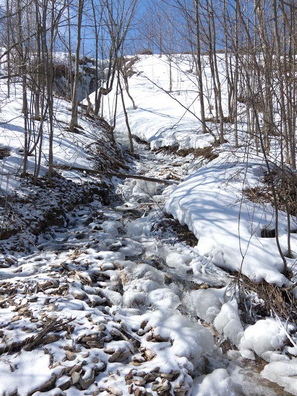 Blue Mountain, snow, Winter, stream, Spring