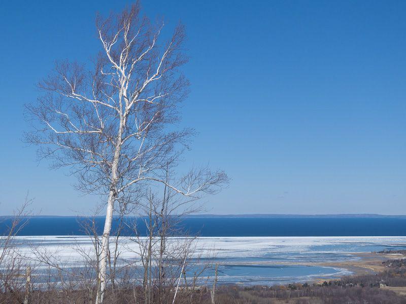 Georgian Bay, Blue Mountain, birch, sky, lake