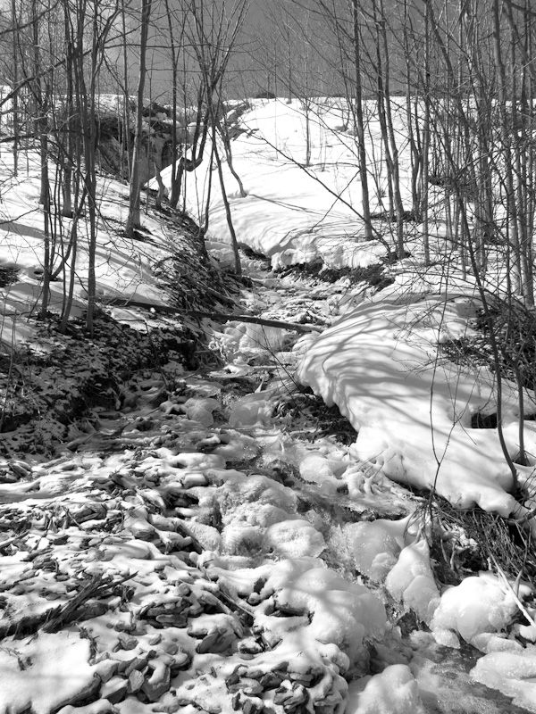 Blue Mountain, snow, Winter, stream, Spring