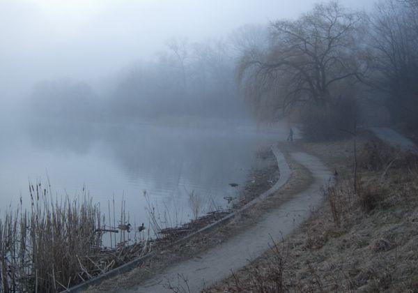 """High Park"" Toronto ""Grenadier Pond"" fog"