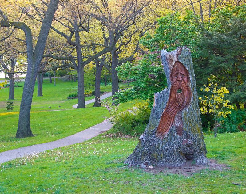 """High Park"" Toronto Spring trees sculpture sunset"