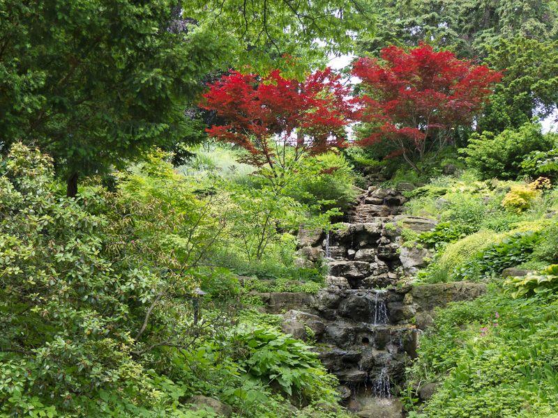"""High Park"" Toronto Spring trees waterfall"