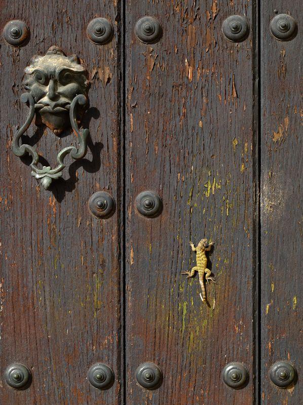 "Remedios Cuba church ""new church"" lizard door"
