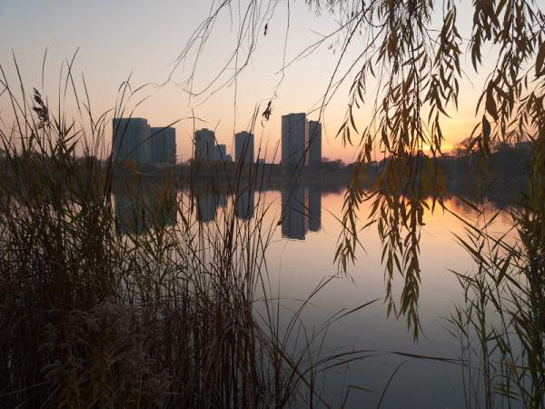 """High Park"" Toronto Autumn buildings reflection"