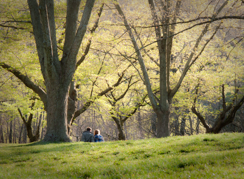 High Park, Toronto, Spring, couple, green, grass,