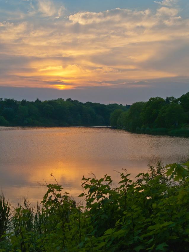 """High Park"" Toronto Spring sunset ""Grenadier Pond"""