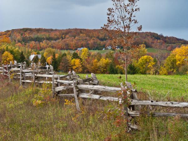 Ontario Collingwood Blue Mountain Fall Autumn