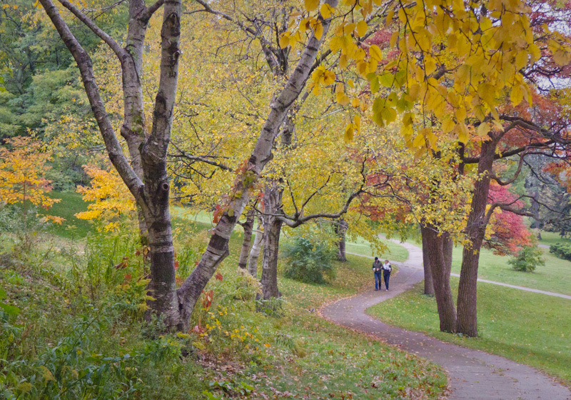 High Park Toronto Autumn Fall colors couple leaves