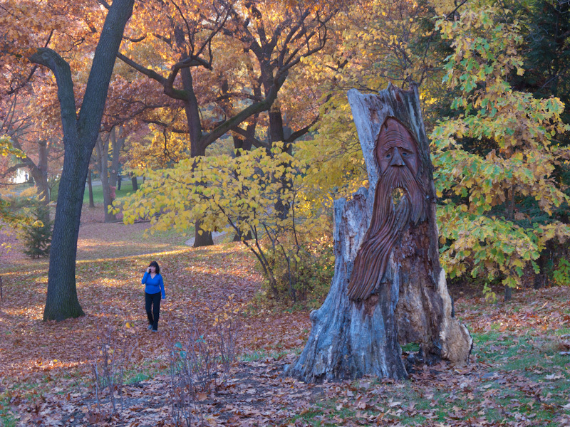 High Park Toronto Autumn Fall colors people leaves