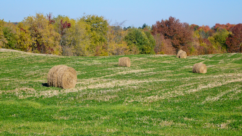 Ontario Autum colours bale hay field