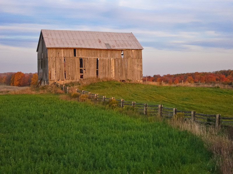 Ontario Autum colours old barn Fall green grass