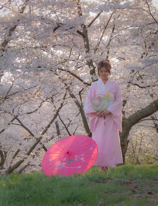 High Park Toronto Spring sakura kimono cherry