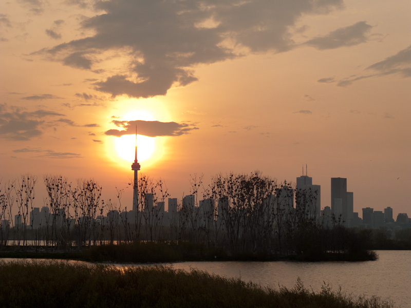 Toronto skyline sunset lake Ontario Spring