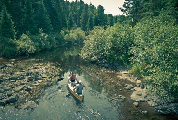 Algonquin Ontario canoe lake Summer creek