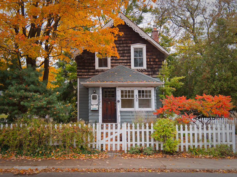 Autumn Fall colours Burlington house street red