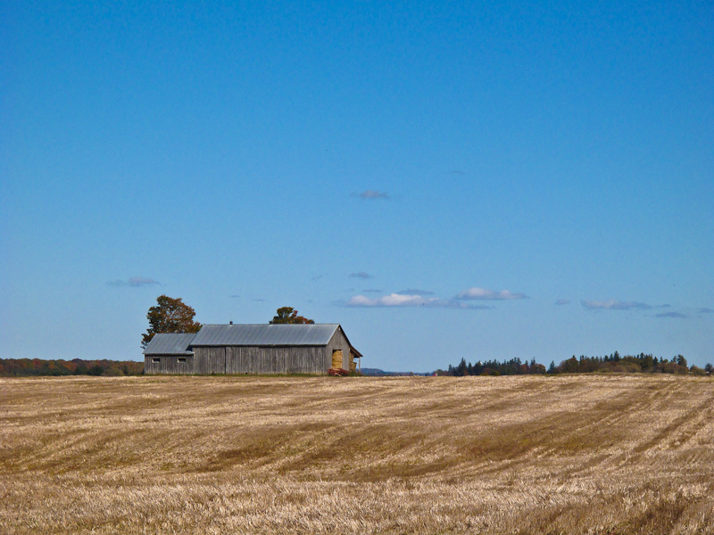 Ontario Autumn backroad farm barn grain field