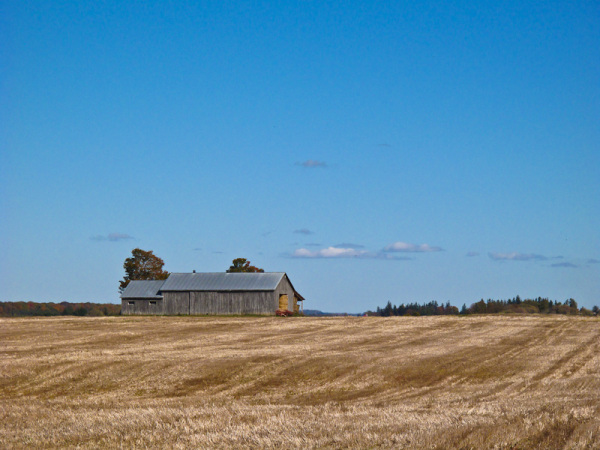 Ontario Autumn backroad farm barn grain field