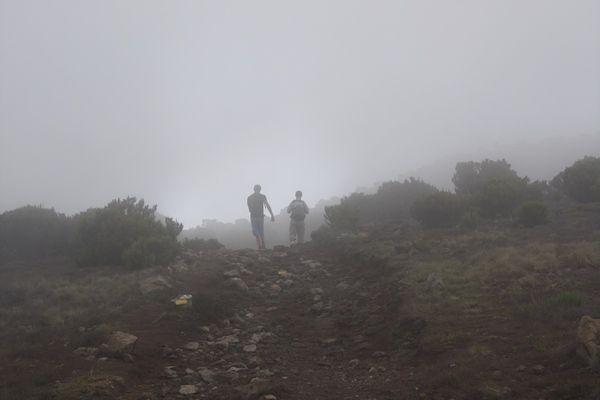 Le grand et le petit - La Réunion