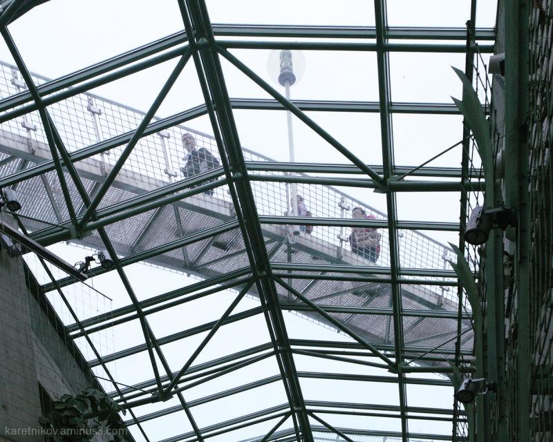 The flying footbridge