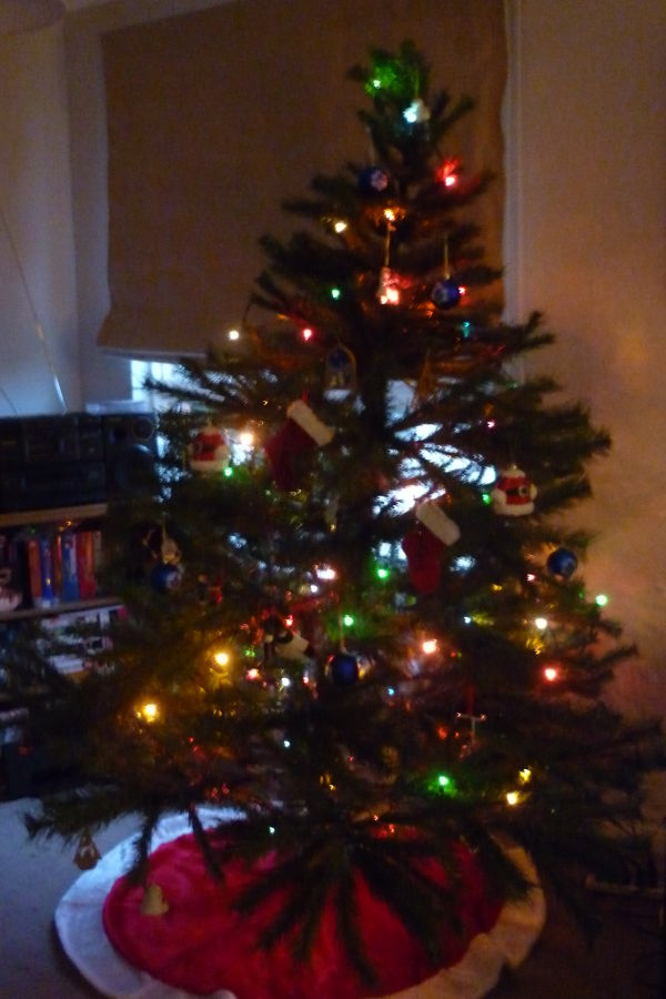 My gfs tree all lit up