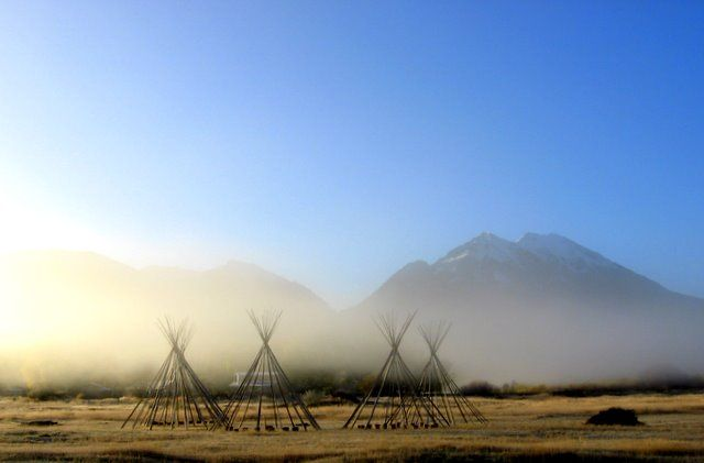 tipis in the mist
