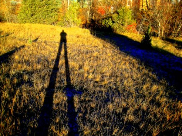 lomg-legged shadow
