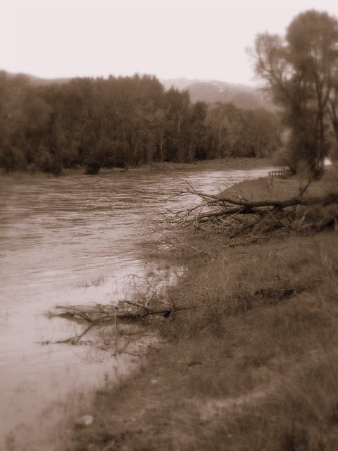 yellowstone river inlet