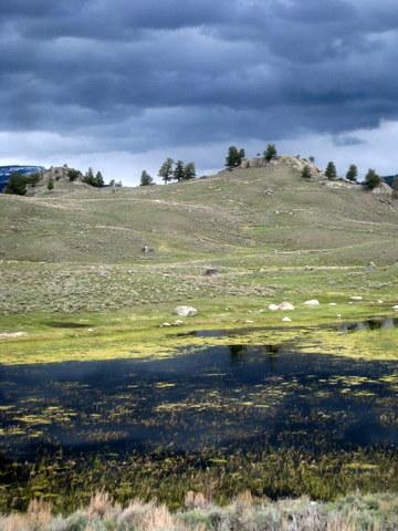yellowstone prairie pond