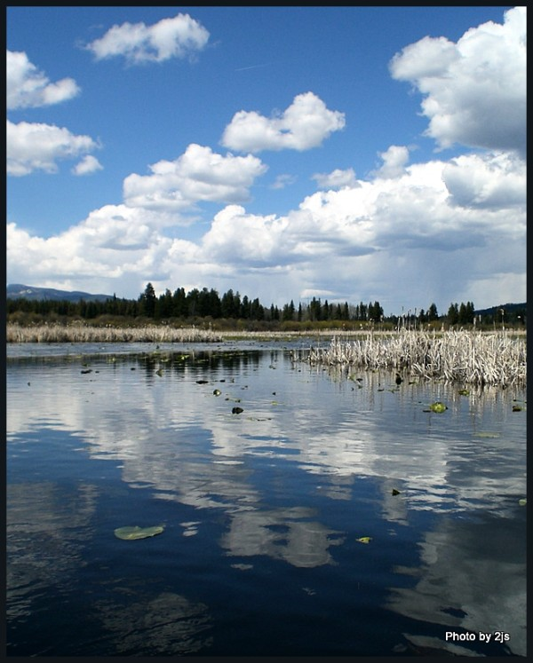 Seeley Lake  Marsh end