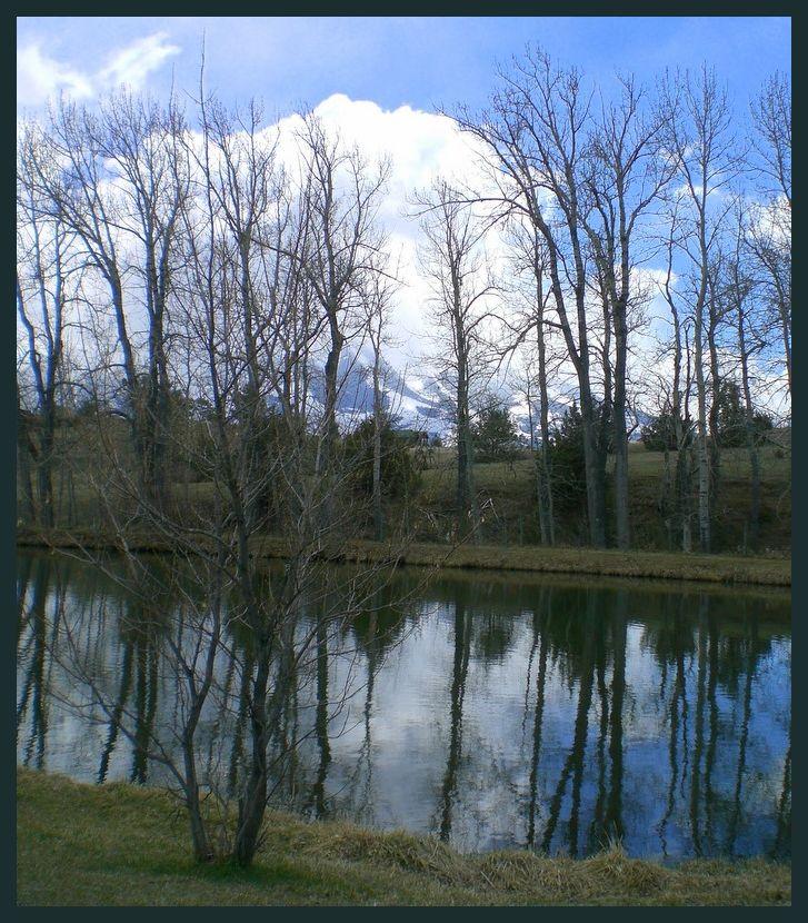 Glastonbury Pond on Saturday