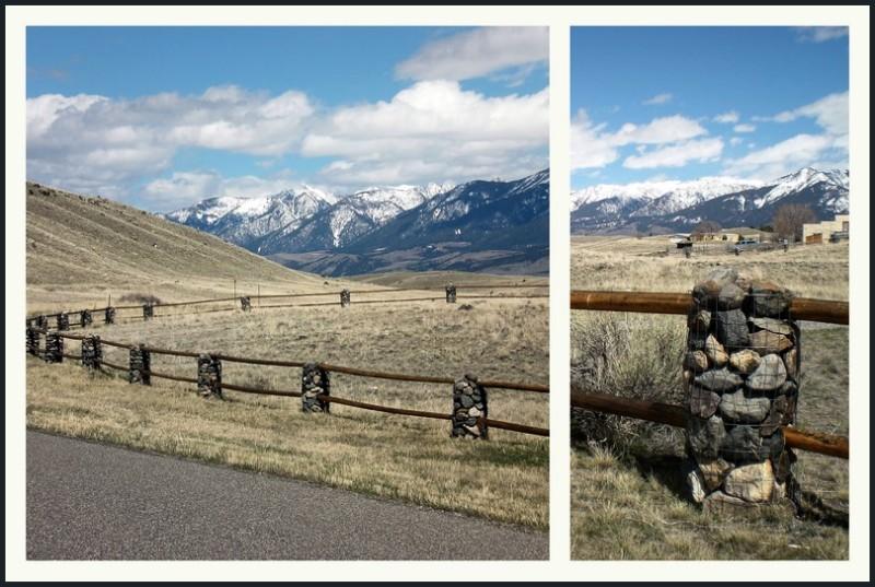Lodgepole & rock fence