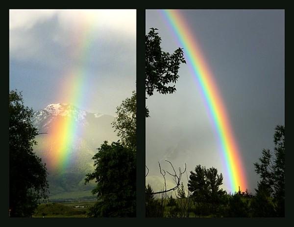 Emigrant      Montana       Rainbow